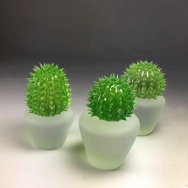 Cactus oursins