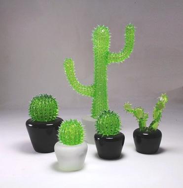 Famille cactus