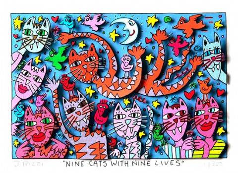 Nine cats with nine lives